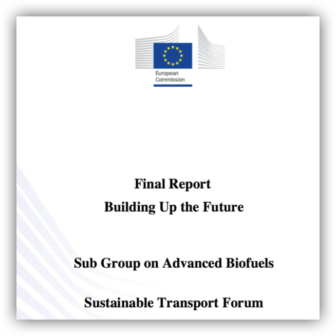 Rapport Sub Group Advanced Biofuels_Final Report