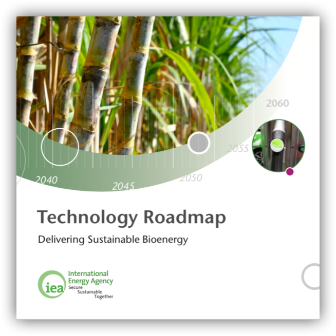 IEA_Technology Roadmap – Delivering sustainable Bioenergy