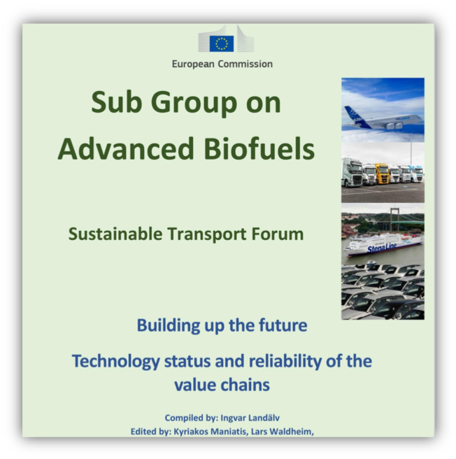 Rapport Sub Group Advanced Biofuels – Technology Status and Reliability of the value chains