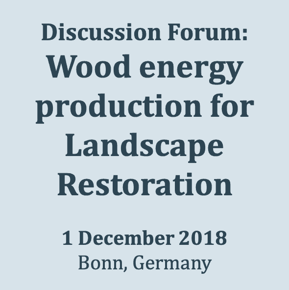 18_1201 Contribution of a sustainable wood energy production approach to Forest Landscape Restoration