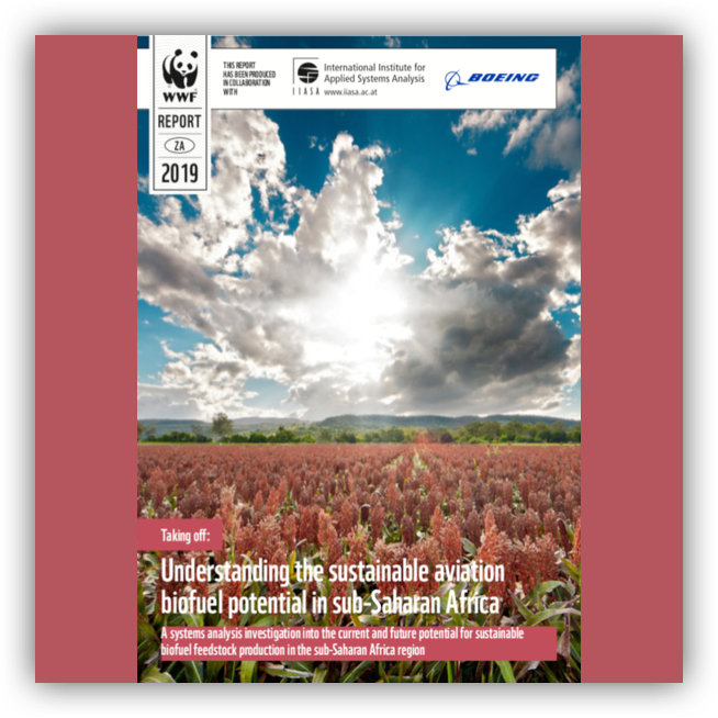 Understanding the sustainable aviation biofuel production potential in Sub-Saharan Africa