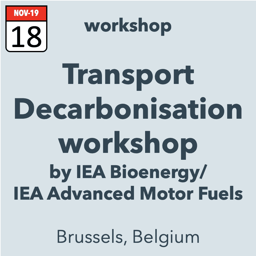IEA-BIO/IEA-AMF Transport Decarbonisation Workshop
