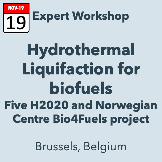 Expert Workshop Potential of Hydrothermal Liquefaction routes for biofuel production