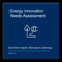 Energy Innovation Needs Assessment Sub-theme report: biomass & bioenergy
