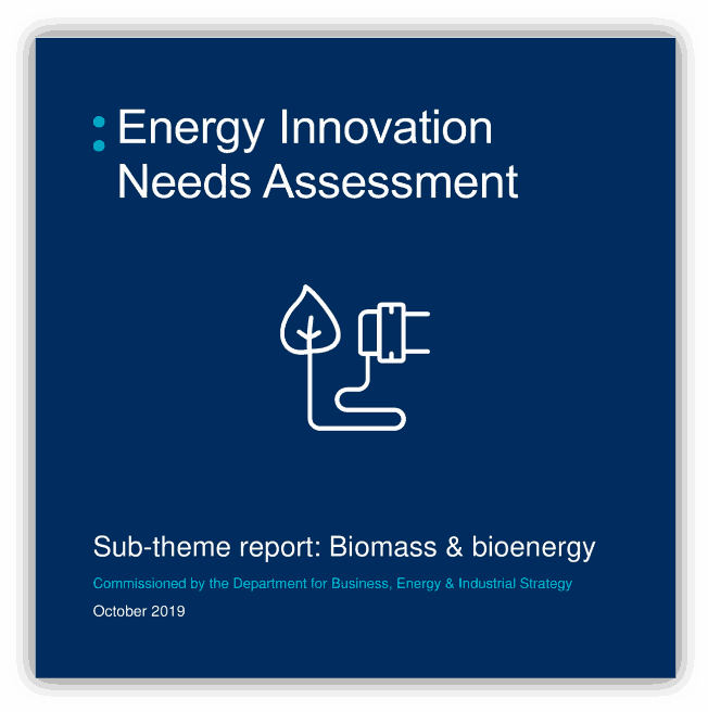 Energy Innovation Needs Assessment Sub-theme report: biomass & bioenergy