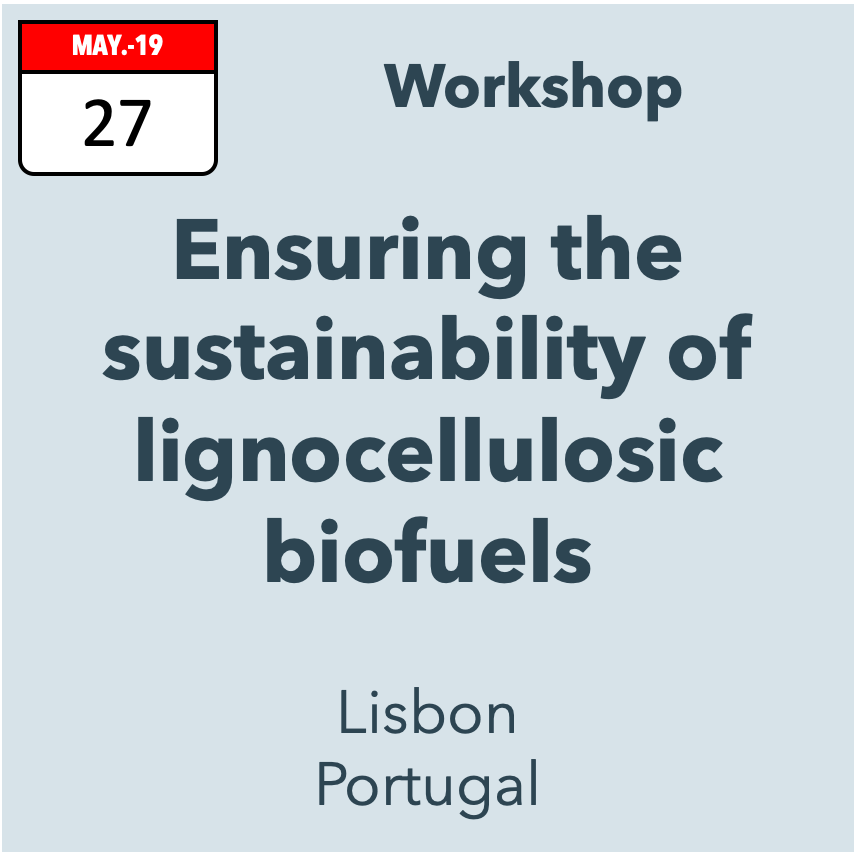 Ensuring the sustainability of advanced lignocellulosic biofuels