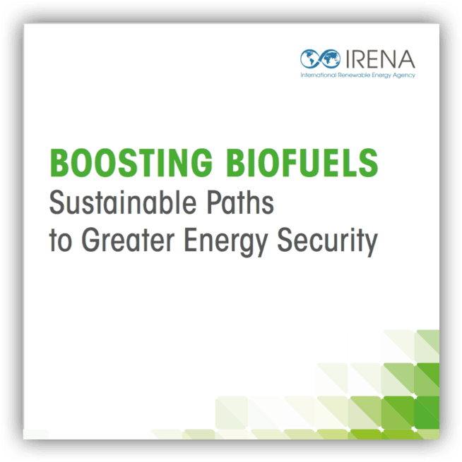 Boosting Biofuels – Sustainable Paths to a Greater Energy Security